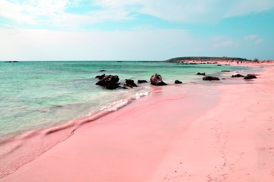 gorgeous pink sand in bermuda